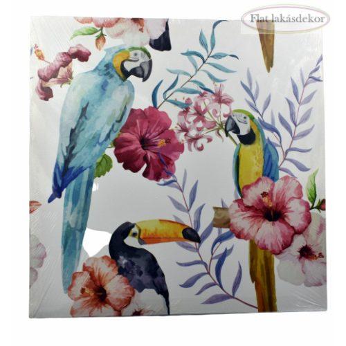 Vászonkép 40X2X40 Papagáj fehér