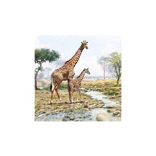 Papírszalvéta 33x33cm, 20db-os-Giraffes